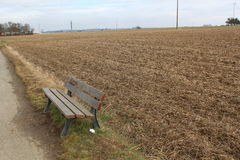 Bench in open field. Wooden bench on the edge of a field with white paper tissue on the ground Stock Photography