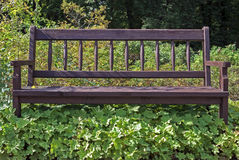 Bench overgrown with weeds Royalty Free Stock Photo