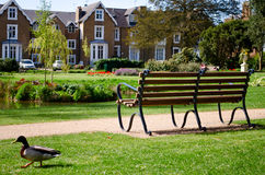 Bench overlooking houses and park. A bench overlooking nice homes, in a park setting Royalty Free Stock Images