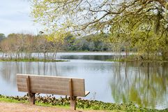 Bench overlooking a lake Stock Photography