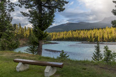 Bench Overlooking Mountains and River in Evening - Alberta, Cana Royalty Free Stock Image