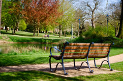 A bench overlooking a pond. A bench situated beside a pond in a sunny lit park area Stock Photography