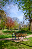 Bench overlooking a pond. A bench situated beside a pond in a sunny lit park area Stock Photos
