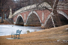 Bench Overlooking River. A Bench Overlooking the River in Boston, MA stock photo