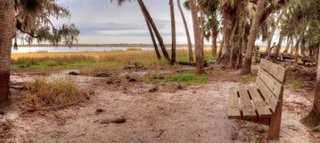 Bench at overlooking the wetland and marsh at the Myakka River S. Tate Park in Sarasota, Florida, USA Stock Photo