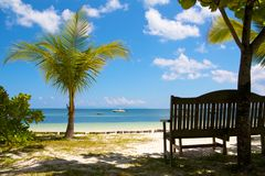 Bench at a paradise beach. View on the Indian Ocean of the Seychelles with a little palm tree and a wooden bench Royalty Free Stock Photos