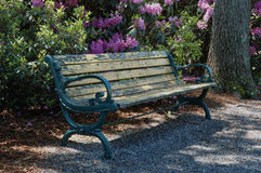 Bench in the park. A park bench in the shade Stock Photo
