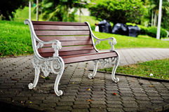Bench in the park. Only bench that can be found in the park underneath a huge tree Royalty Free Stock Photo
