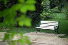 Bench in a park. A bench in a park in summer Stock Images