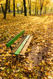 Bench in park Stock Photography