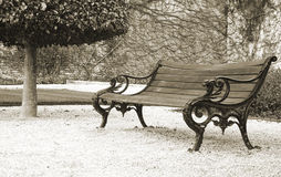 Bench in the park. Empty bench and the tree in the park. Converted into black and white and sepia filter added Stock Image