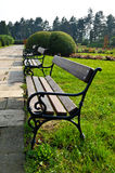 Benches in the public park. Wooden benches in the park with paved alley near by Royalty Free Stock Photography