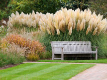 Bench in a park. Bench in a quiet and relaxing London park Stock Photography