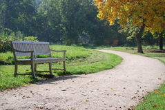 Bench at the park. Solitary bench on autumn at the park Royalty Free Stock Photos