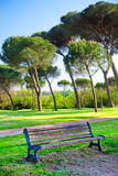 Bench in a park Stock Image