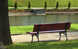 Bench in park. Idyllic scene of bench in a park Royalty Free Stock Image