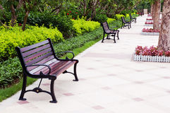 Bench in park. Romantic bench in paceful park in summer royalty free stock images