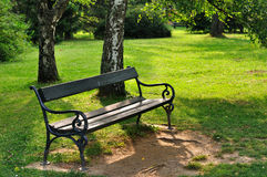 Bench in park. Empty wooden bench in the city park Royalty Free Stock Photo