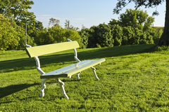 Bench in a park. Empty wooden bench on a lawn in a park on a sunny day Royalty Free Stock Photo