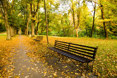 Bench in the park. Bench located near the walkway in the park (in the autumn time of year Stock Photos