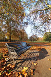 Bench in the park. In autumn Stock Images