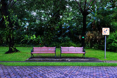 Bench in a park. With a green background Stock Image