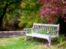 Bench in a park Stock Photos