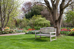 Bench in a park. Bench in a beautiful park in spring time Stock Photo