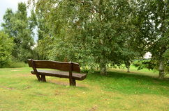 Bench in the park. Lonely bench in the park Royalty Free Stock Image