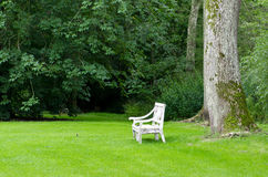 Bench in a park Royalty Free Stock Photography