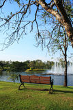 Bench in the park. Bench in front of the fountain in the park Royalty Free Stock Images
