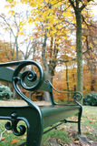 Bench in the park. A lonely bench in the park with autumn Stock Photography