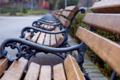 Bench in a park. Wooden benches in a park on rain royalty free stock images