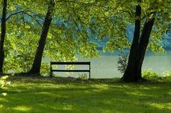 Bench in park. Near small lake Stock Photos