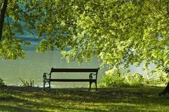 Bench in park. Near small lake Royalty Free Stock Images