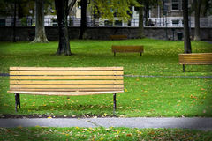 Bench park. In autumn background Royalty Free Stock Image