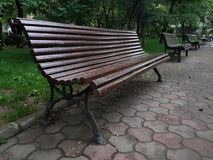 Bench in park Royalty Free Stock Image