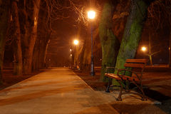 Bench and park Stock Photos