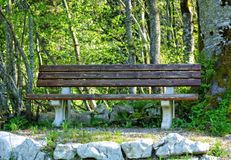 Bench in Park Royalty Free Stock Photos