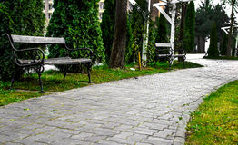 Bench on Park Alley. Grey green picture with two benches on a park alley Stock Photography