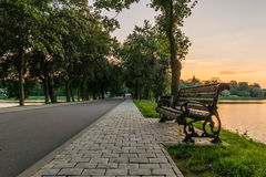 Bench in the park alley near the lake Royalty Free Stock Image