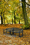 Bench in park in autumn Stock Photos
