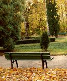 Bench In Park On Autumn Stock Photography