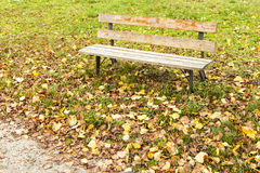 Bench in the park Stock Image