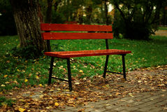 Bench in the park. Autumn Royalty Free Stock Photos