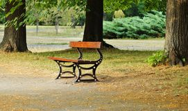 Bench in park - autumn Royalty Free Stock Image
