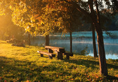 Bench on the park. Bench on the autumn park Royalty Free Stock Photo