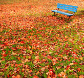 Bench park autumn leaves. A lone, blue bench in a park surrounded by autumn leaves Royalty Free Stock Photos
