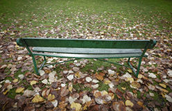 Bench in the park with autumn leaves in Spain Royalty Free Stock Photography