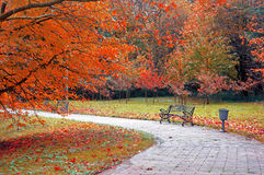 Bench in park on autumn Royalty Free Stock Photography